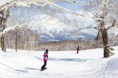 things to do in Niseko