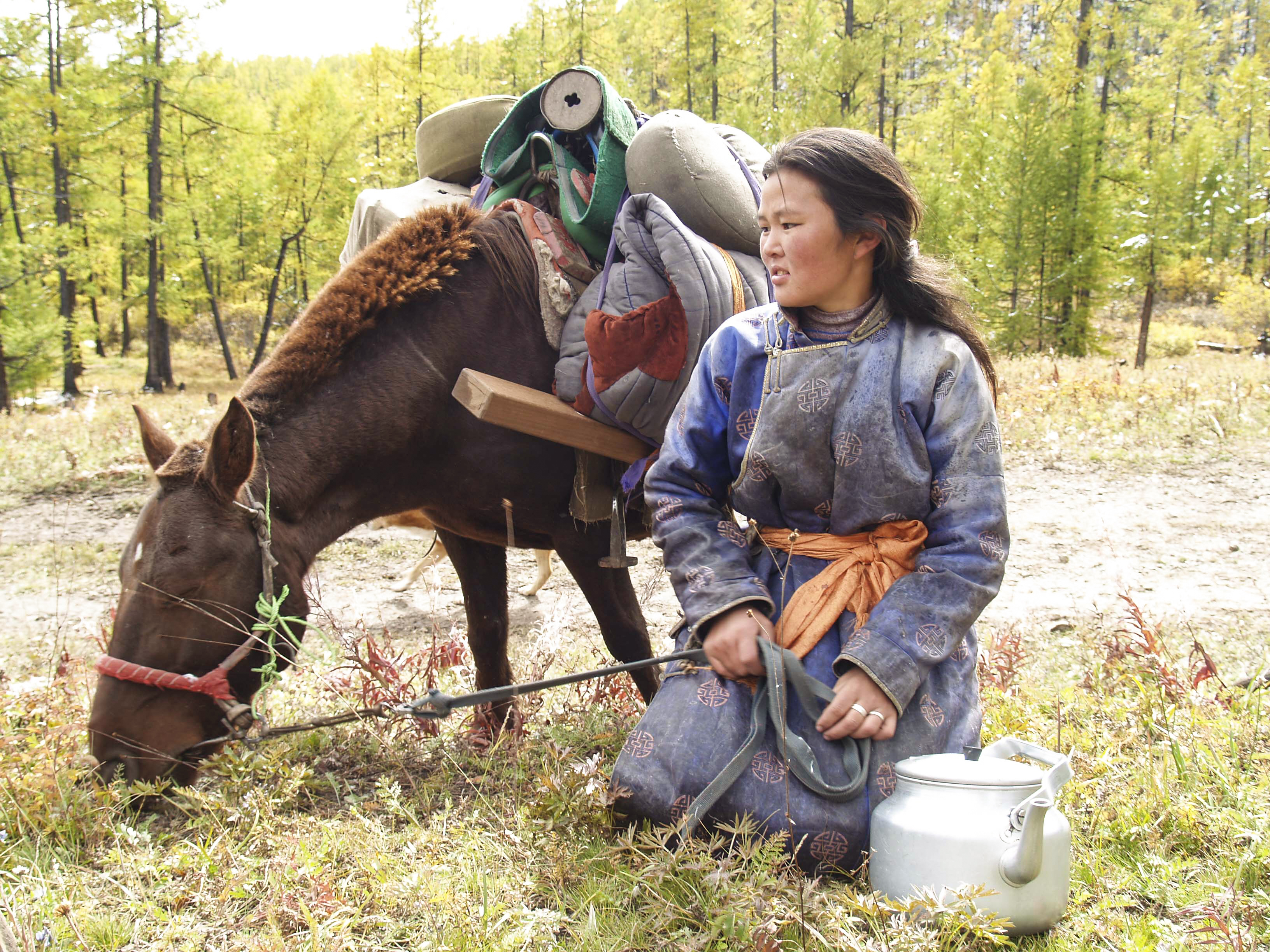 About half of the population in Mongolia are nomads
